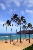 Immagine di riserva della baia di Hanauma, Oahu, Hawai Fotografia Stock Libera da Diritti