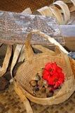 Immagine di riserva della cultura, del ballo, del festival e delle arti della Polinesia Immagine Stock