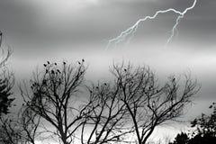 Immagine di riserva della tempesta d'argento Fotografie Stock Libere da Diritti