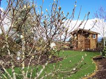 Immagine di riserva della tettoia di impregnazione del giardino Immagini Stock