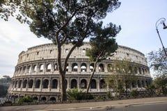 Immagine di Roma: il Colosseum maestoso Immagine Stock