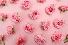 Immagine di sfondo delle rose rosa Disposizione piana, vista superiore Fotografia Stock Libera da Diritti