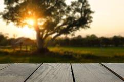Immagine di sfuocatura del legno del terrazzo di agricoltura e di bello prato di tramonto Immagine Stock