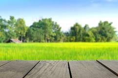 Immagine di sfuocatura del legno del terrazzo e della vita di agricoltura Fotografia Stock