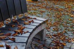 Immagine di simbolo di autunno con le foglie di autunno asciutte intorno ad un banco di parco Fotografia Stock