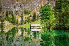 Immagine di specchio delle alpi nel lago Obersee Fotografia Stock Libera da Diritti