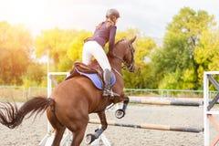 Immagine di sport equestre Concorrenza di salto di manifestazione Immagini Stock Libere da Diritti