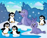 Immagine 2 di tema dei pinguini e delle guarnizioni Immagini Stock Libere da Diritti