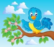 Immagine di tema dell'uccello Fotografia Stock