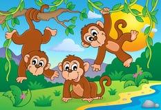Immagine 1 di tema della scimmia Fotografie Stock Libere da Diritti