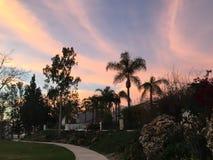 Immagine di tramonto nel parco Immagine Stock Libera da Diritti