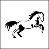 Immagine di un cavallo Immagine Stock