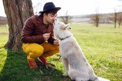Immagine di un concetto del cane e del migliore amico del husky immagini stock