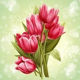 Immagine di un mazzo dei fiori dei tulipani rosa Immagini Stock