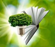 immagine di un primo piano stilizzato della lampada, dell'albero e del libro Immagini Stock