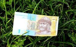 Immagine di una banconota ucraina di Hryvnia su un fondo dell'erba Immagine Stock Libera da Diritti