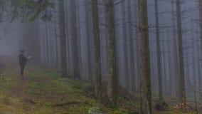 Immagine di una donna osservando una mappa di carta fra i pini alti nella foresta fotografia stock libera da diritti