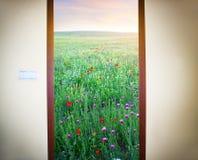 Immagine di una porta aperta Fotografie Stock Libere da Diritti