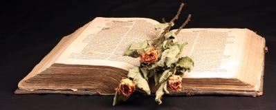 Immagine di vecchio aprire-libro Immagini Stock