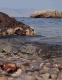 Immagine di vettore del mare con le rocce illustrazione di stock