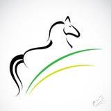Immagine di vettore di un cavallo Immagine Stock