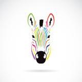 Immagine di vettore di una testa della zebra variopinta Immagine Stock Libera da Diritti