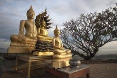 Immagine dorata di Buddha Fotografie Stock