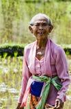 Immagine editoriale documentaria Ritratto dell'agricoltore anziano di balinese Fotografia Stock