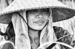 Immagine editoriale documentaria Ritratto della lavoratrice agricola Fotografie Stock