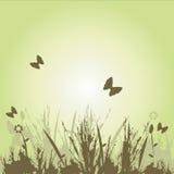 Immagine floreale illustrazione di stock