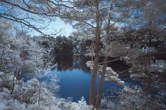 Immagine infrarossa surreale del paesaggio di bello colore falso del lago a Fotografia Stock