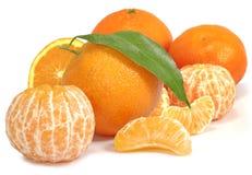 Immagine isolata del primo piano del mandarino e dell'arancia Immagine Stock Libera da Diritti