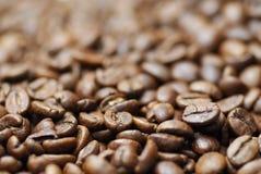 Immagine a macroistruzione dei chicchi di caffè decaffinated. Immagine Stock