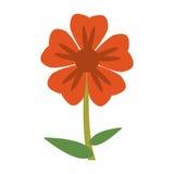 immagine naturale del fiore del geranio royalty illustrazione gratis