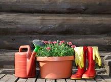 Immagine orizzontale degli strumenti di giardino Fotografia Stock