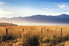 Immagine pacifica di un campo di coltivazione come gli aumenti del sole immagine stock libera da diritti