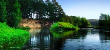 Immagine panoramica del fiume della foresta fotografia stock