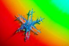 Immagine reale dei fiocchi di neve con un grande aumento nella neve di inverno Acqua congelata Fotografie Stock