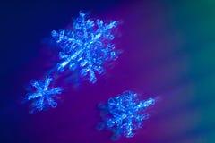 Immagine reale dei fiocchi di neve con un grande aumento nella neve di inverno Acqua congelata Fotografia Stock Libera da Diritti
