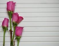 Immagine romantica di fotografia del fiore con le rose rosa in germoglio su un fondo di legno bianco naturale Immagini Stock