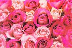 Immagine rossa e rosa delle rose con il fondo di vetro della superficie di struttura fotografia stock libera da diritti