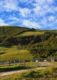 Immagine rurale Fotografie Stock