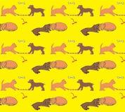 Immagine senza cuciture Amicizia di un gattino e di un cucciolo royalty illustrazione gratis
