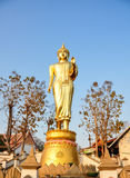 Immagine stante di Buddha, Nan Fotografia Stock Libera da Diritti