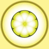 Immagine stilizzata di vettore del limone royalty illustrazione gratis