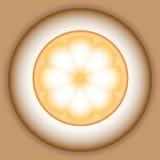 Immagine stilizzata di vettore dell'arancia illustrazione di stock