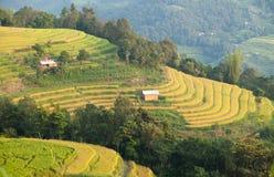 Immagine tipica di un paesaggio asiatico del villaggio in una zona rurale Fotografia Stock
