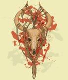 Immagine variopinta del cranio animale con i corni Fotografie Stock Libere da Diritti
