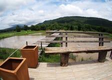 Immagine verde del fondo del contesto di vista del terrazzo dell'azienda agricola organica del giacimento del riso Fotografia Stock