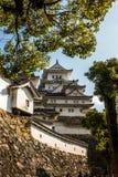 Immagine verticale con la parete di pietra esterna bianca ed il bello castello Fotografia Stock Libera da Diritti